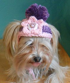 Crocheted Cat or Dog Hat Striped Pink and Purple Pet by Fancihorse