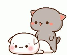 Cute Anime Cat, Cute Cat Gif, Cute Cartoon Images, Mochi, Animated Gif, Conversation, Hello Kitty, Gifs, Animation