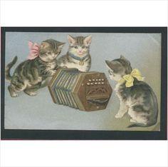 3 Cats Around an Accordian Old Postcard on eBid United Kingdom