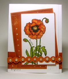 SC366 Poppy by Biggan - Cards and Paper Crafts at Splitcoaststampers