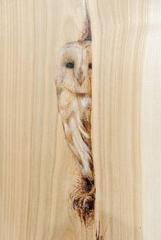 The Barn Owl. Animal Drawings using Pyrography. By LeRoc. The Barn Owl. Animal Drawings using Pyrography. By LeRoc. Wood Burning Tips, Wood Burning Crafts, Wood Burning Patterns, Diy Wood Projects, Wood Crafts, Art Projects, Wood Burn Designs, Pyrography Patterns, Pyrography Ideas