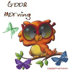 Good Morning cute butterfly bird gif owl good morning