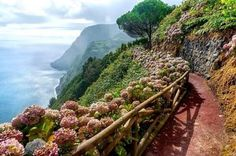 Miguel Island, Paradise is something like this! Places In Portugal, Portugal Travel, Portugal Trip, Paradise On Earth, Summer Travel, Where To Go, Adventure Travel, Places To See, Beautiful Places