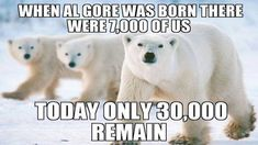 Even though liberals will shove the lies of climate change down your throat, they aren't even close to true.