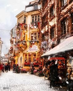 Snowy days in Strasbourg europe europe today - Christmas wonderland - Christmas Wonderland, Christmas Mood, Christmas Lights, Europe Christmas, Xmas, Christmas Images, Christmas In The City, Christmas Markets, Christmas Shopping