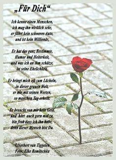 Danke mein Liebling für diesen schönen Pinja, ehrlich bin ich u. das ist nicht gelogen Hasemaus ich möchte für dich die beste Hasenfrau auf der ganzen Welt sein ich möchte dir gut tun,dich verwöhnen,dich glücklich machen u. dich lieben ohne Ende Hase auch für dich eine Rose, denn du machst mich mit deiner wundervollen Liebe zur glücklichsten Hasenfrau im ganzen Universum Hase ich liebe dich so sehr,so tief,so ehrlich,ich möchte für immer bei dir seinILD