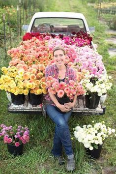 Profitable, Small-Scale Flower Farming – Organic Gardening Cut flowers are one of the highest-grossing crops per acre. Create a debt-free. The Farm, Growing Flowers, Cut Flowers, Planting Flowers, Wild Flowers, Flowering Plants, Growing Plants, Summer Flowers, Purple Flowers