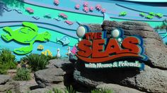 Our 10 favorite things to do at Walt Disney World in the summertime:  Cooling off in The Seas with Nemo & Friends