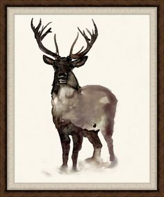 14999 Stag Sighting 2 - Animals - Our Product $437.50 28.75 x 34.75 #WildGame