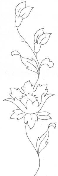 [flor1.jpg]