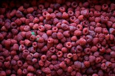 raspberrytart: