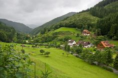 Black Forest of Germany for healing retreat The Beautiful Country, Beautiful Places, Black Forest Germany, Visit Germany, Hobbies And Interests, Beautiful Landscapes, Header, Places Ive Been, Countryside