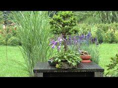 DIY: süßer Miniatur-Garten als Frühlingsdeko für den Tisch [How to ...