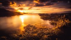 Sizzling Seaweed - A long exposure, landscape image of the sun setting over the…