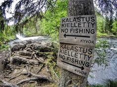 No fishing.  KYVOK  Kuusamon Ympäristössä Vituttaa Olla Kalassa . . . . . . . #kuusamo #tbt #travel #traveler #traveling #travelgram #finnishboy #landscape #landscape_lovers #finnish #travelphotography #instatravel #instapic #instagramers #f4f #hiking #follow #followme #nature #instarunners #trailrunning #nature_perfection #fashion #friends #smile #instamood #nofilter #sun #love #finnishgirl