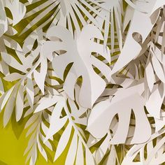 Paper palm leaves