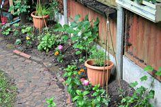 Discover your garden