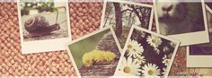 Vintage snapshots