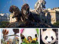 Madrid con niños: Actividades para niños en Madrid