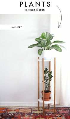 The House That Lars Built.: Plant display options for various rooms in the house.