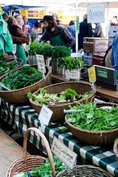 Ferry Plaza Farmers Market | Kitchen Confidante | Greens