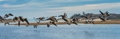 Take Off Panorama by Paul Sikorski on 500px
