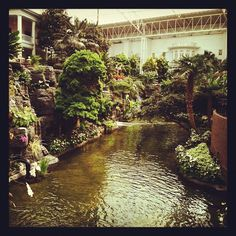 Take a boat ride inside the hotel at Gaylord Opryland. Photo by mogulmagazine • Instagram