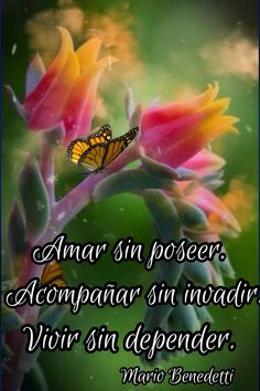 Good Morning Messages, Good Morning Quotes, Good Night In Spanish, Beautiful Love Pictures, Retro Videos, Morning Greeting, Good Day, Bible Verses, Motivational Quotes