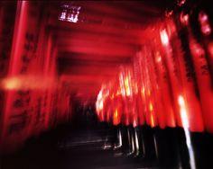 写真少年漂流記: 平成新都名所針孔図会の試み 伏見稲荷大社(京都市伏見区深草藪之内町) Harman TiTAN 4x5 Pinhole Kodak Portra160