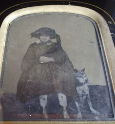 AMBROTYPE: Folksy Portrait of a Victorian Girl + BOXER or PIT BULL TERRIER DOG - staffordshire terrier mix?