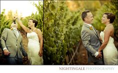 Beautiful Sebastiani Winery Wedding, in Sonoma by Nightingale Photography | San Francisco, Bay Area, Napa, New Orleans, Professional Photographer, Wedding Planner, Bridal Shoes, Bridal Gown, Jewelry, Designer, Couple Portraits, Vintage Inspired, Vineyard, Wine Country