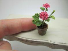 Fiori - Vilia Miniature