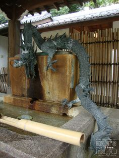 Fountain with dragon