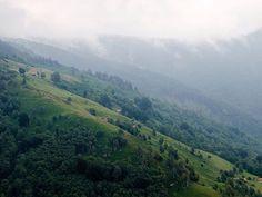 Val Colla Switzerland, Hiking, River, Summer, Outdoor, Instagram, Walks, Outdoors, Summer Time