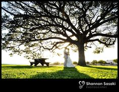 wedding love www.shannonsasakiphotography.com