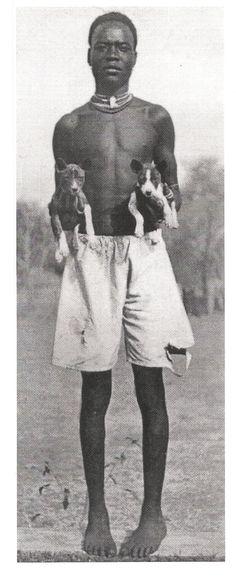 My first dog was a basenji -- Hank.  Basenjis in central Africa.