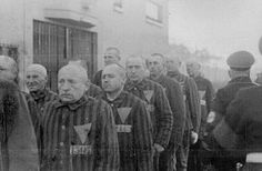 Sachsenhausen concentration camp - Wikipedia, the free encyclopedia