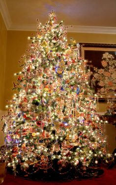 Christmas tree decorations are the best part of this festival. It needs one to be meticulous to do this task and handling the ornaments, the tinsel, the garland, and more required patience. Types Of Christmas Trees, Beautiful Christmas Trees, Christmas Scenes, Noel Christmas, Christmas Lights, Christmas Greenery, Xmas, Christmas Cactus, Christmas Ornaments