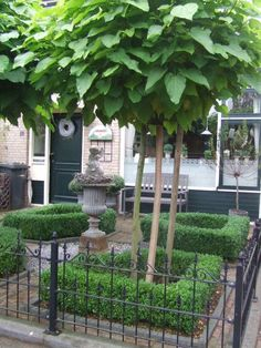 Boxwood courtyard stunning small formal front yard and will look good year round. Small Garden Shrubs, Garden Urns, White Gardens, Small Gardens, Front Gardens, Outdoor Gardens, Classic Garden, Small Garden Design, Garden Spaces
