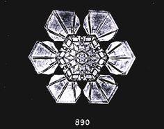 Wilson Bentley snowflake photo