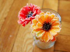 tutorial to make borax crystal flowers                                                                                                                                                                                 More