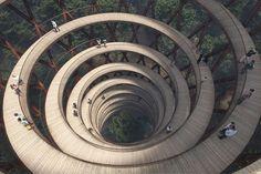 Un proiect grandios în Danemarca: O pasarelă impunătoare construită deasupra unei păduri