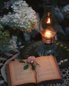 Ana Rosa~My Favorites✨ Book Flowers, Deco Floral, Book Aesthetic, Candle Lanterns, Candels, Oil Lamps, Book Photography, Whimsical Photography, Editorial Photography