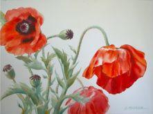 Bonnie Mettler: Fine Arts