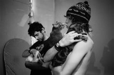 Andrew Vanwyngarden and kittens , can anything be cuter than it ? i suppose no