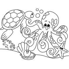 Sea turtle. Octopus. Starfish. Clam. Sea