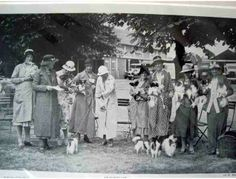 Vintage Papillon Enthusiasts Photograph from England -- Circa - Online Fundraising Auction - BiddingForGood Cool Cat Toys, Cool Cats, French Dogs, Papillon Dog, Cat Towers, Lots Of Cats, Cutest Thing Ever, Vintage Dog, Dog Art