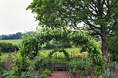 Pear trees are trained over hazel arches in the kitchen garden. Arne Maynard's Rustic Home in Wales, Photo Gallery