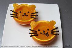 cat orange jelly