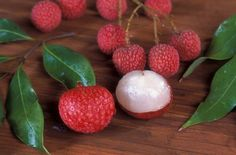 Exotic fruit trees to grow in Southern California... including lychee!